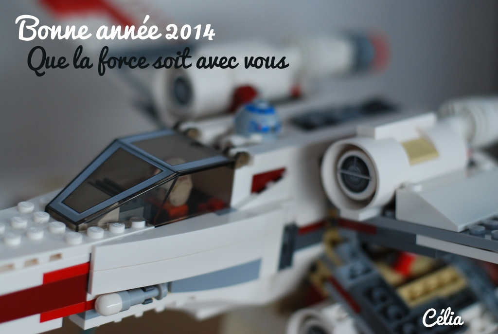 May the force be with you - 2014 - Célia zut