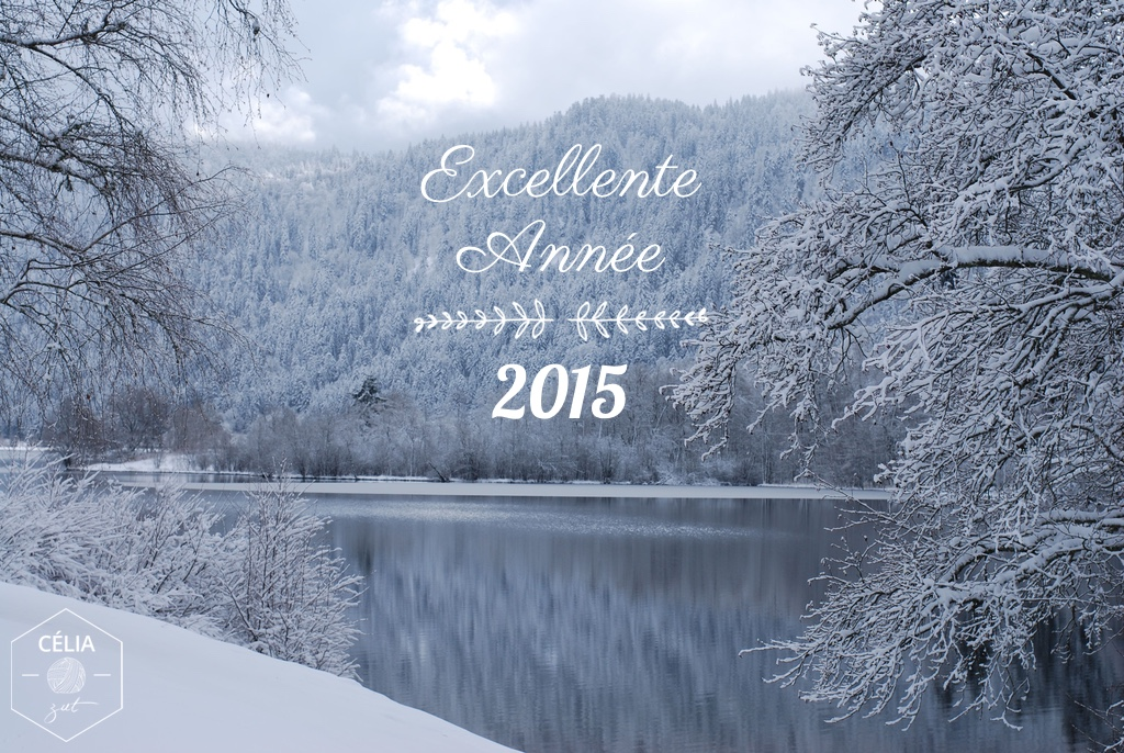 Excellente Année 2015 - Célia zut