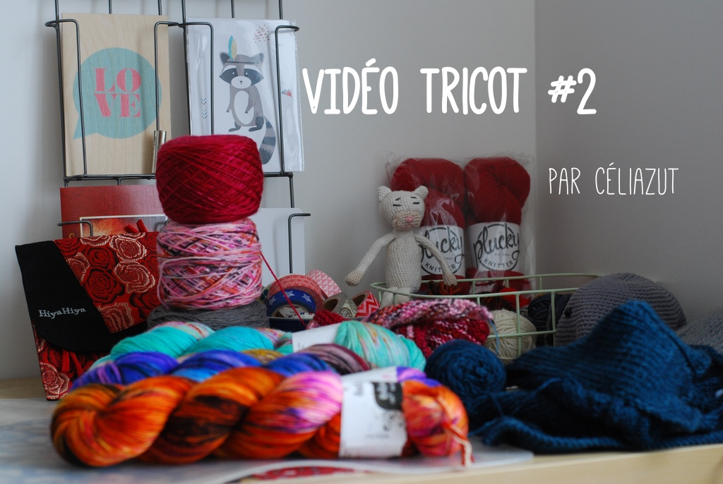 Video tricot #2 - Céliazut