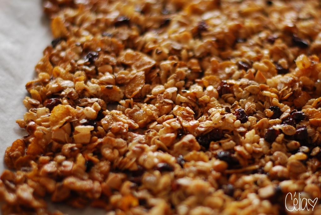 Granola sorti du four - Céliazut